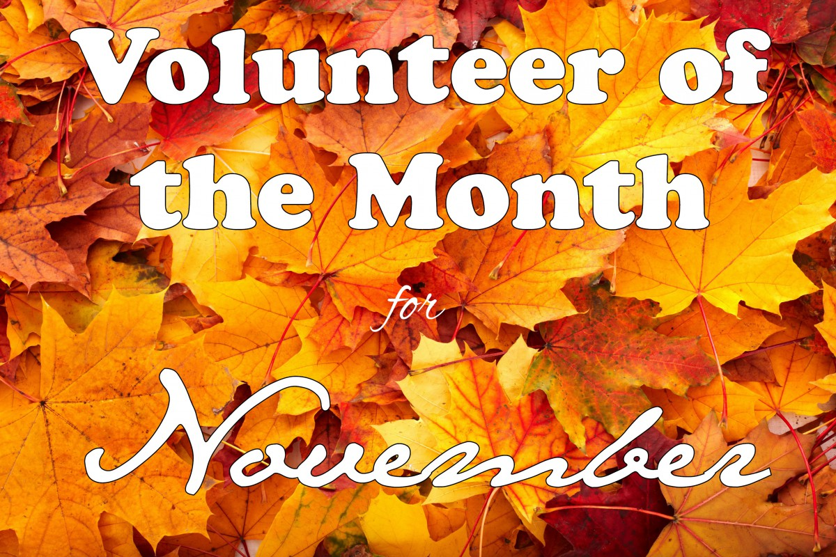 November's Volunteer of the Month
