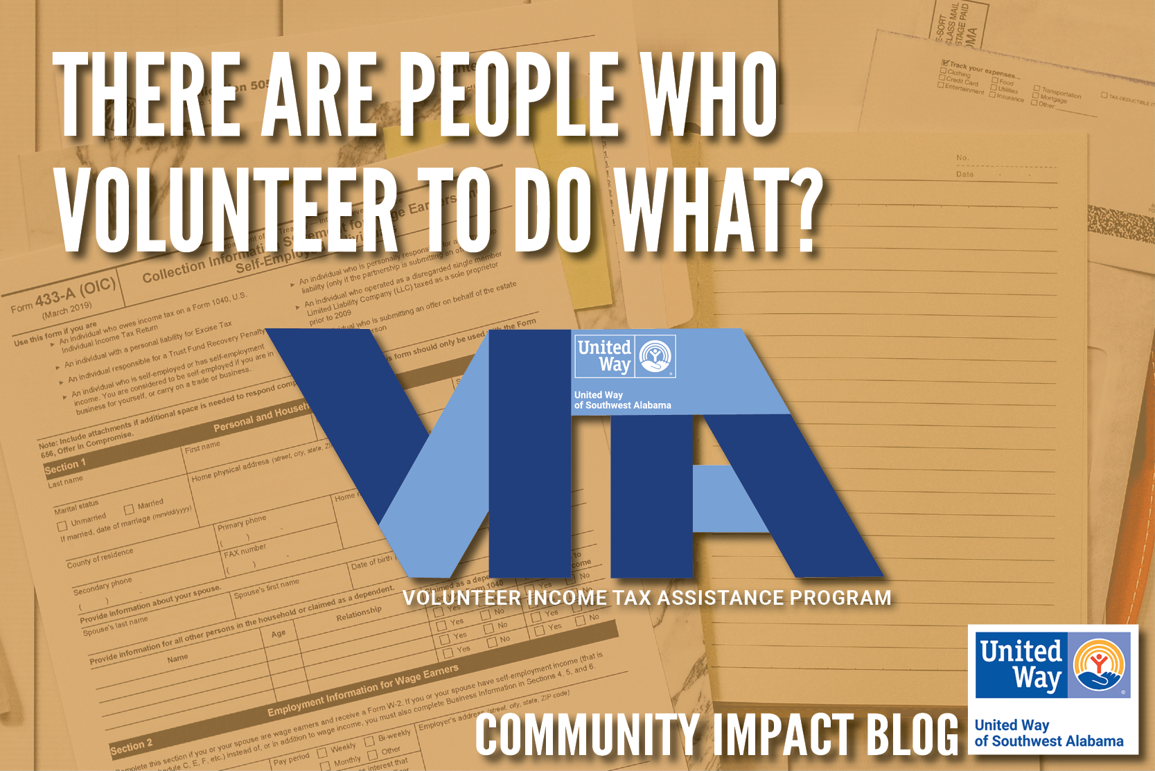"April CI Blog - VITA ""There are People Who Volunteer To Do What""?"