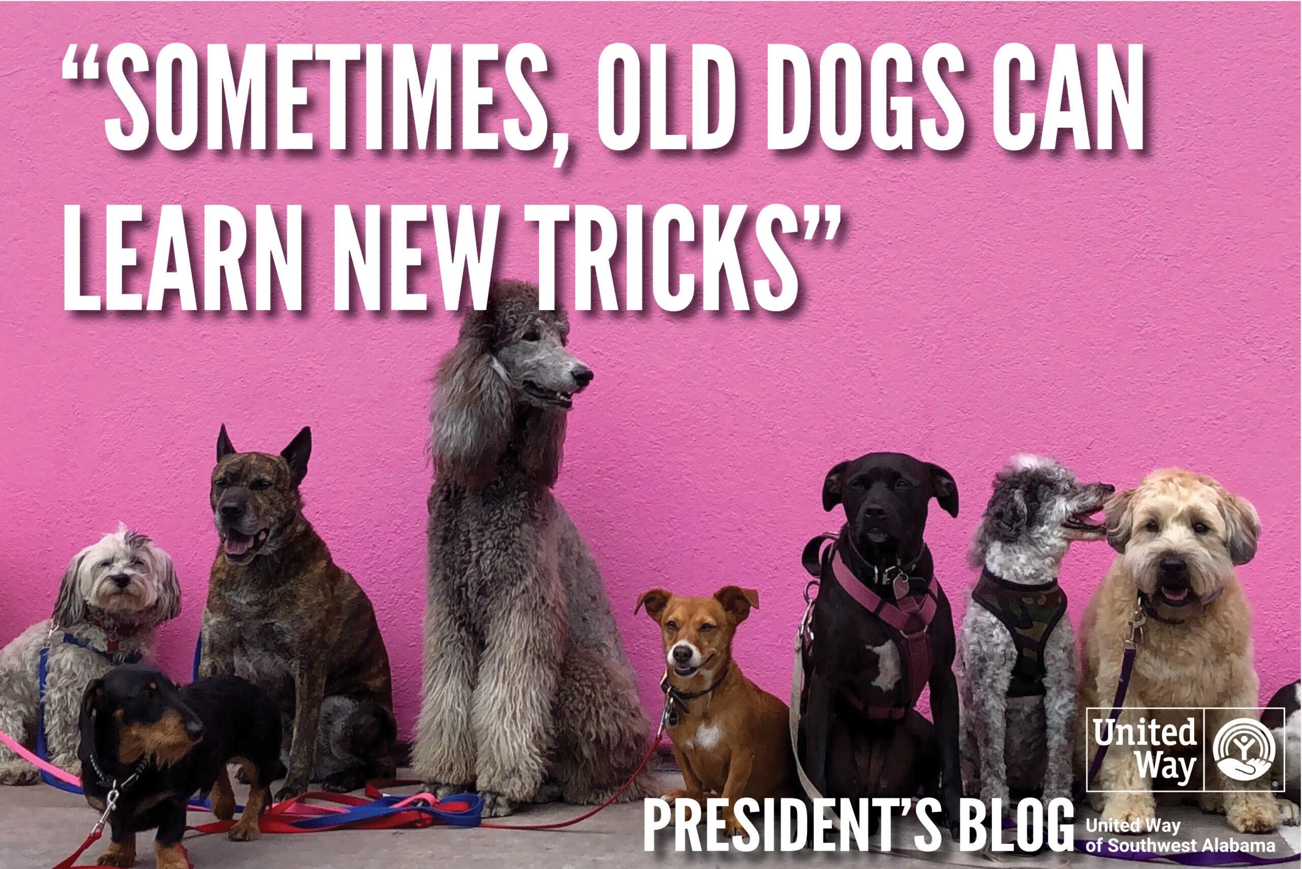 President's September Blog